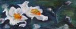 Anémones du Japon. Acrylique. 50x20
