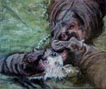 Combat d'hippopotames. Acrylique. 66x53.