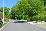 Grün gesäumt: Die Höhtalstrasse