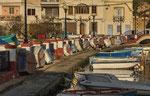 IL Brolli Harbour