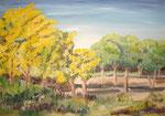 Mimosa grande  60 x 73