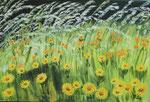 fleurs jaunes   40 x 60