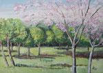Prunus en el bosque   46 x 61