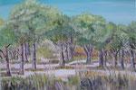 Mi bosque del frente   38 x 55