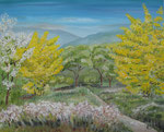 Mimosa pequeña   38 x 55