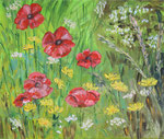 Gros plan coquelicots   55 x 46