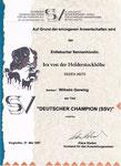 Champion SSV