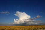 Cumulus devient cumulonimbus donnant de la foudre en arrivant sur le département de l'Eure