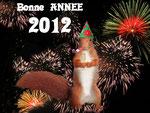 1er janvier 2012: ''Bonne année et à bientôt. Je vais en vacances..''.