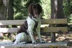 Sammy * 06/2009