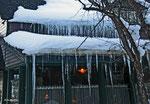 Aspen / Snowmass, Jan 2009