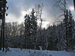 Richtung Fuchstanz, 18.Dezember 2010