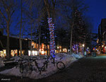 Aspen, Jan 2009
