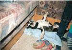 Future Boy schlafend im Wohnwagen