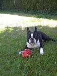 Mein Ball und ich