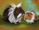 Noa und Sunshine, Pastellkarton, ca. 30 x 40 cm, Fotovorlage: eigene