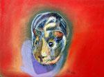 Emmi, Pastellkreide, ca. 30 x 40 cm, Fotovorlage: Peter Andrianos