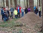 Familienwanderung im Meroder Wald