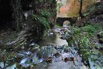 In fondo alla Valle della Crotta dove nasce un ramo secondario del fiume Breggia, Valle di Muggio , Ticino, Svizzera. Info; Nikon D3S + 24-70mm f2.8 Nikon a 24mm + 3 filtri degradanti 0.3-0.6-0.9 a f22  0.7 sec a ISO 100 su cavalletto