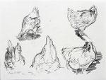 Hartmut Kiewert: *Elviras III*, 2015, Bleistift/Papier, 21 x 29 cm