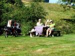 Dernier picnic