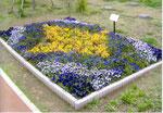 2007年05月 第1花壇