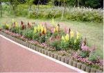 2007年05月 第2花壇