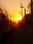 Zug, Sonne, Bahnsteig