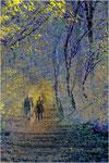 Ein Waldspaziergang. Bildformat: 3:2