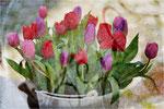 Ein Eimer voll Frühling. Bildformat: 3:2