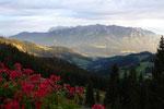 Aussicht auf das Kaisergebirge vom Spitzsteinhaus