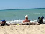 Upps, den Baumstamm kennen wir (Tipp: Paddelregatta) (Indiana Dunes/Lake Michigan)