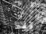 shifting perspectives 12