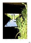 """""""o. T. 1/1"""" - 19 - Werkverzeichnis 2.166 / datiert 14.07.99 / Fotoveränderung als Tintenstrahldruck und Filzstift auf Papier / Maße b 10,5 cm * h 15,0 cm"""