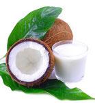 Heileigenschaften des Kokosöls