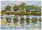 """Polderwiese Odertal""  30 x 40 cm"