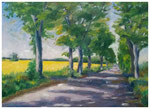"""""""Rapsfeld bei Crussow""""  30 x 40 cm (verkauft)"""