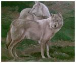 """""""Wölfe""""  teilweise gespachtelt  50 x 60 cm"""