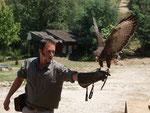 Les Eagle de Valmy ( Perpignan )