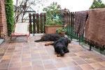 Wir lieben unsere grosse Terrasse die 2010 erneuert wurde :-)