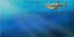Inntal unter Wasser