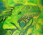 Leguan   verkauft