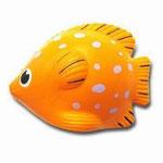 anti-stress tropical fish