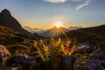 "Anke Wolfert - ""Sonnenuntergang in den Allgäuer Alpen"""