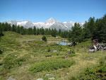 Moosalp,  sommige delen van de Moosalp zijn beschermd natuurgebied . 1,5 km² met 11 verschillenden  Bogbiotopen.