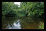 © Objectif Loutre - Stéphane Raimond - l'étang des loutres