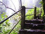 Weg zu Aling Aling