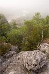 Nebel an der Ardèche bei Chauzon