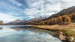Lago di Sils