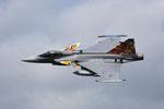 "Czech Air Force Saab JAS 39 ""Gripen"" 9238 ""special Tiger tail"""